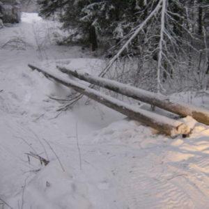 Bernt och Roland bygger bro över sågbäcken.